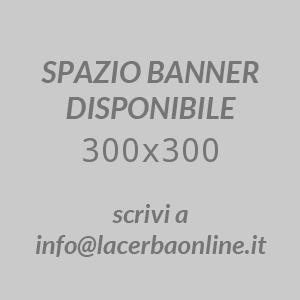 Banner Test (25)